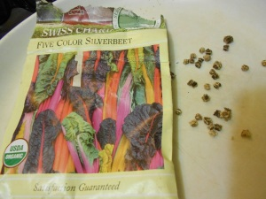 Heirloom chard seeds from Seed Savers Exchange