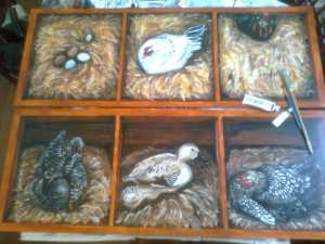 nesting doors 1