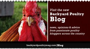 Follow this link to Backyard Poultry Magazine's website.