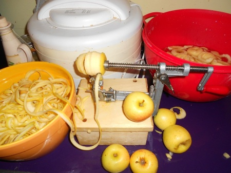 apples peeled sliced