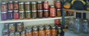 Canning Shelf 2